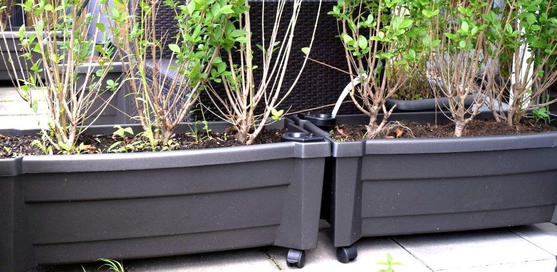 Pflanzkübel mit Rollen machen aus einer Terrasse viele! • Der ...